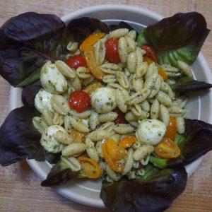 SALADE-PATES-tomates-mozzarella-pesto